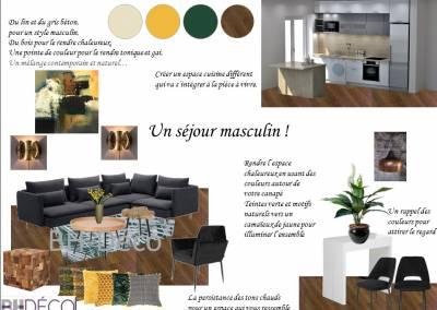BH-Déco - Sylvie Samain - Planche d'ambiance Séjour cuisine vert jaune bois matières naturelles Les Ulis